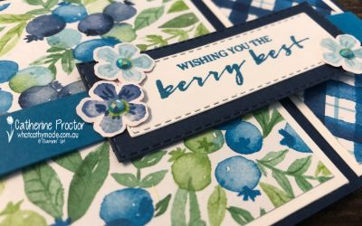 Stampin' Up! Pacific Point – Week 32 AWH Colour Creations Showcase