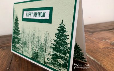 Stampin' Up! Shaded Spruce – Week 46 AWH Colour Creations Showcase